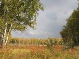 russland-sibirien-m51-herbst1