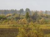 russland-sibirien-m51-herbst2