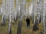 russland-sibirien-pilzes-sammeln-im-wald