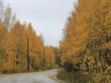 russland-ural-zyuryatkul-weg2