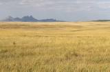 kasachstan-goldene-steppe-zackenberge