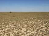 Kazachstan Standplatz Steppe