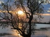 18. Juni Wolgadelta Sonnenuntergang