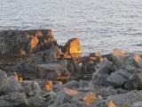 mitternachtssonne-lofoten-ramberg-7